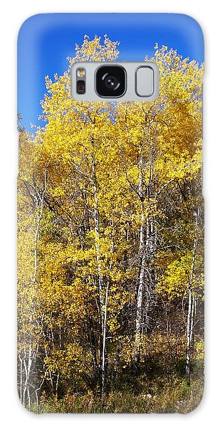 A Perfect Fall Day Galaxy Case by Sheila Byers