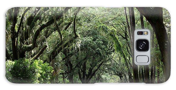 A Pretty Tree Covered Road Somewhere On Hilton Head Island Galaxy Case