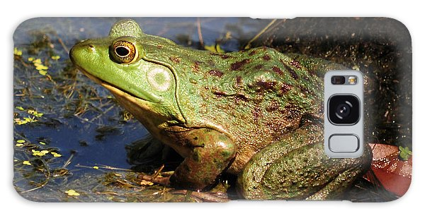 A Prince Of A Frog Galaxy Case by Kathy Baccari
