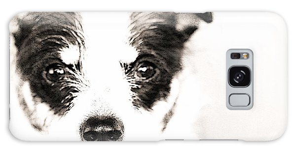 A Rat Terrier ... Mix Galaxy Case