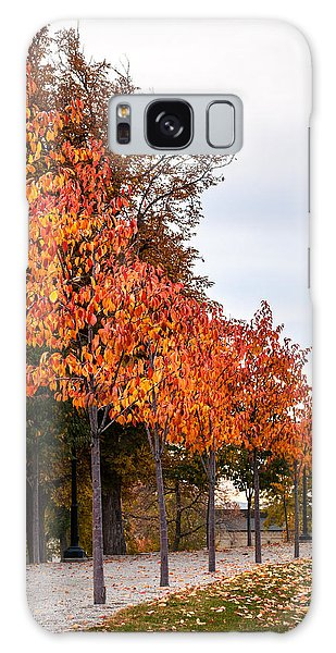 A Row Of Autumn Trees Galaxy Case