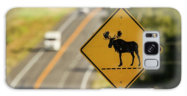 Aroostook County Galaxy Case - A Sign For Moose In Maine by Carl D. Walsh