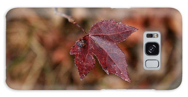 A Single Leaf Galaxy Case