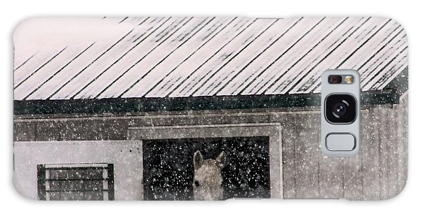 A Snowfall At The Stable Galaxy Case by Bruce Patrick Smith