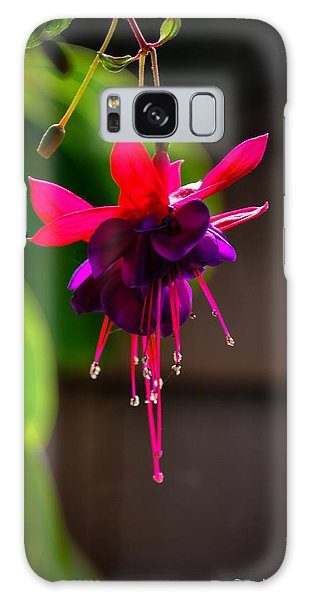 A Special Red Flower  Galaxy Case by Gandz Photography