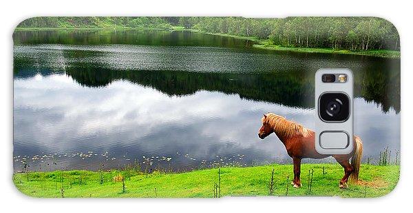 A Stallion Watching His Kingdom Galaxy Case