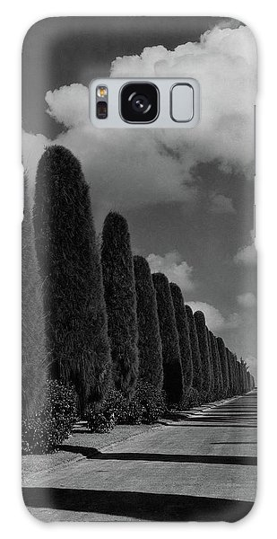 A Street Lined With Cypress Trees Galaxy Case