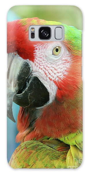 Macaw Galaxy Case - A Thing Of Beauty Is A Joy Forever by Sharon Mau