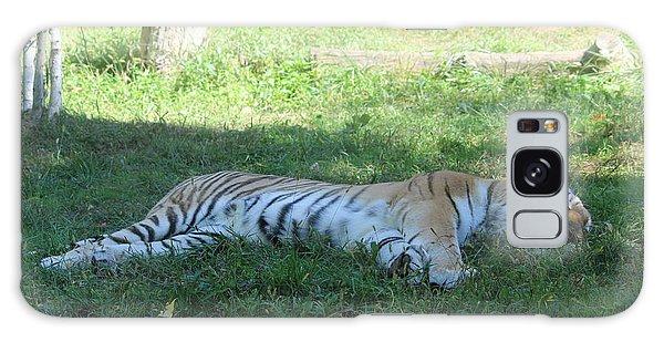 A Tiger Sleeps In The Shade Galaxy Case