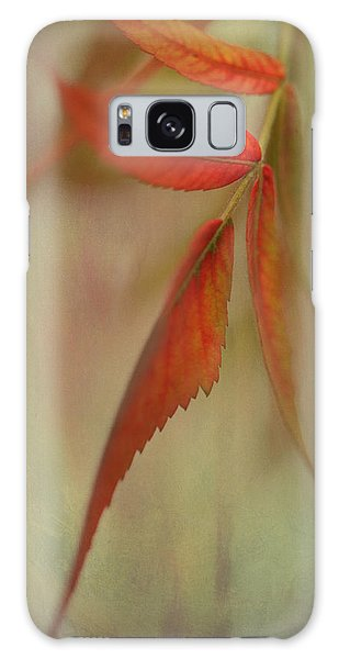 A Touch Of Autumn Galaxy Case