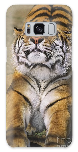 A Tough Day Siberian Tiger Endangered Species Wildlife Rescue Galaxy Case by Dave Welling