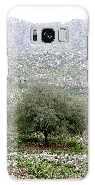 A Tree In Israel Galaxy Case