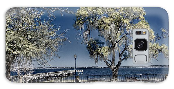 A View Of Lake Minneola Galaxy Case by Lewis Mann