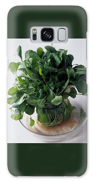 A Watercress Plant In A Bowl Of Water Galaxy Case