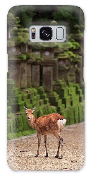 Kansai Galaxy Case - A Wild Deer Stands Next To A Long Line by Paul Dymond