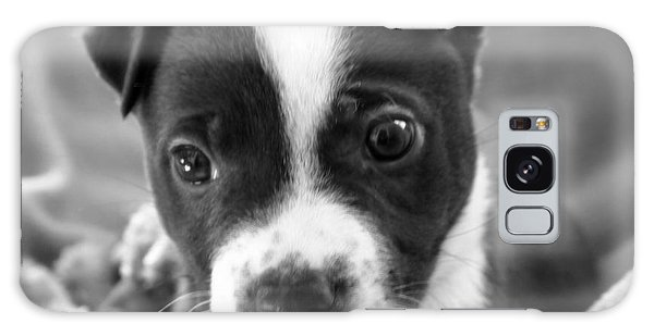 Abby The Rescued Dog Galaxy Case