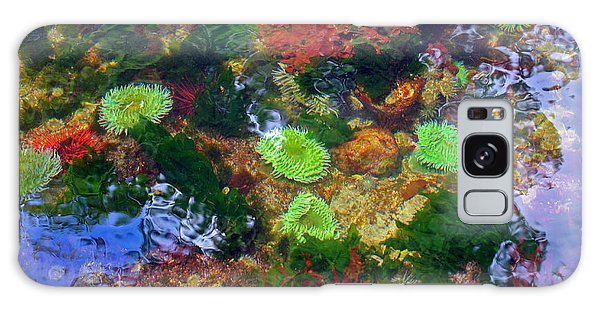 Abstract Tidal Pool Galaxy Case