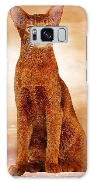 Abyssinian Cat Sorrel Color Galaxy Case