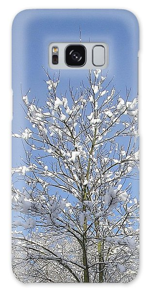Ash Tree In Winter Galaxy Case