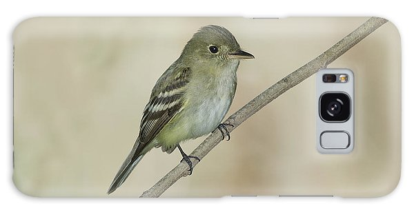 Acadian Flycatcher Galaxy Case