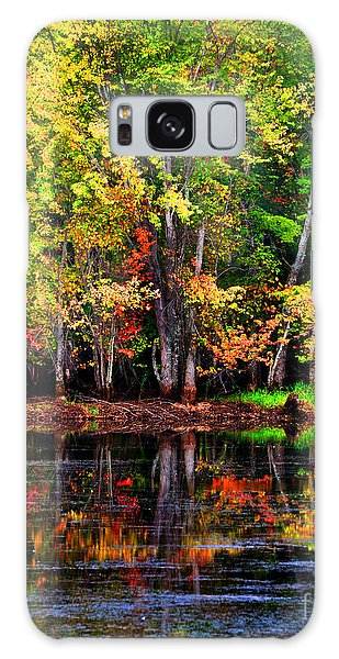 Adirondack Reflections Galaxy Case