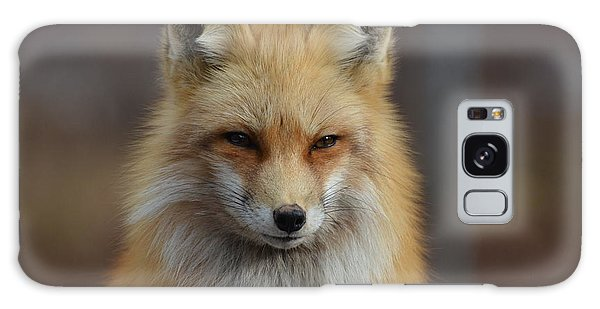 Adorable Red Fox Galaxy Case