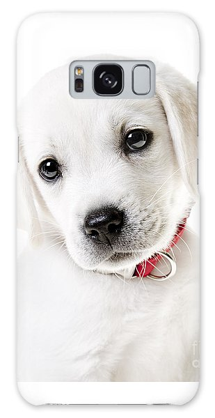Adorable Yellow Lab Puppy Galaxy Case