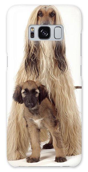 Sighthound Galaxy Case - Afghan Hound And Puppy by John Daniels