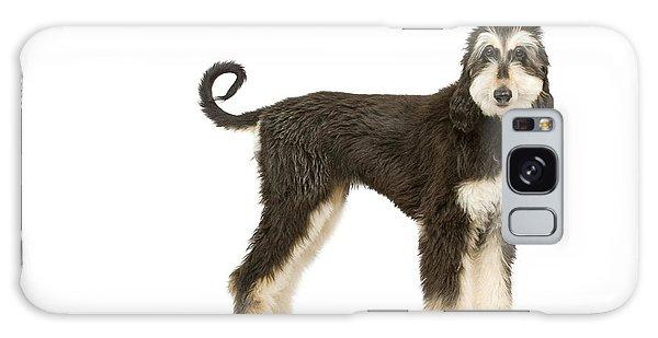 Sighthound Galaxy Case - Afghan Hound by Jean-Michel Labat