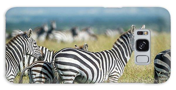 Africa, Tanzania, Zebras Galaxy Case