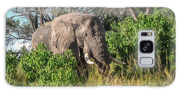 African Bush Elephant Galaxy Case