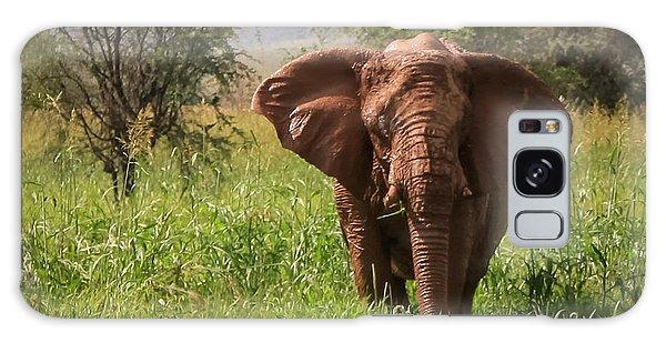 African Desert Elephant Galaxy Case