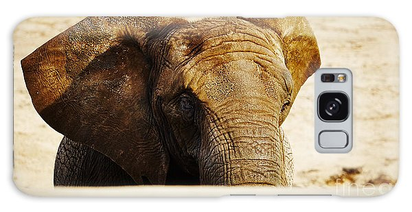 African Elephant Behind A Hill Galaxy Case