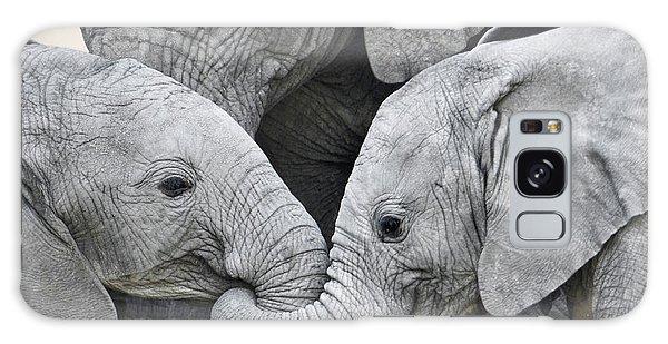 African Elephant Calves Loxodonta Galaxy Case
