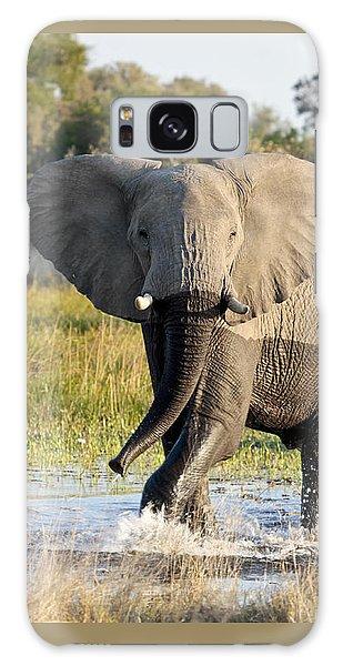 African Elephant Mock-charging Galaxy Case