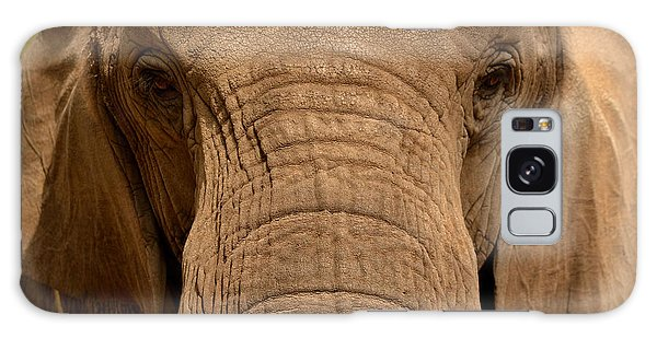 African Elephant Galaxy Case by Nadalyn Larsen
