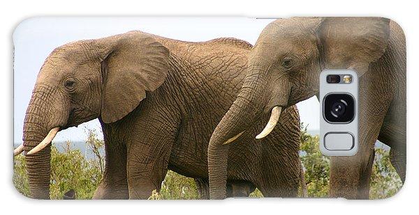 African Elephants Galaxy Case by Menachem Ganon