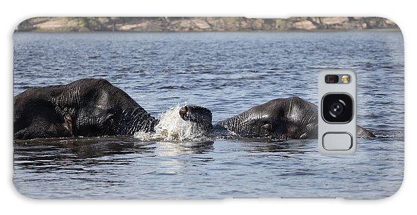 African Elephants Swimming In The Chobe River Botswana Galaxy Case