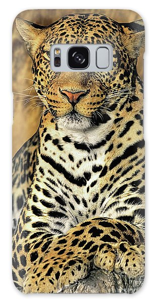 African Leopard Portrait Wildlife Rescue Galaxy Case by Dave Welling