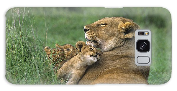African Lions Mother And Cubs Tanzania Galaxy Case by Dave Welling