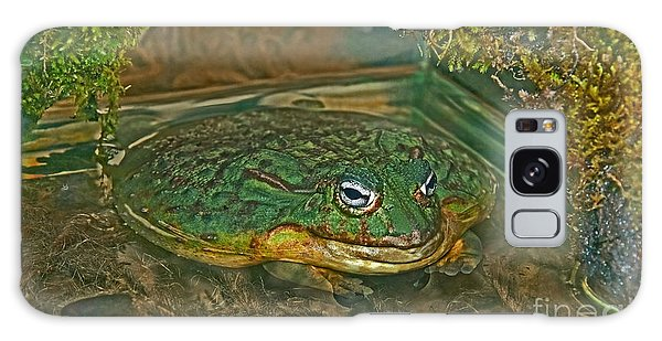 African Pixie Frog In Water Galaxy Case