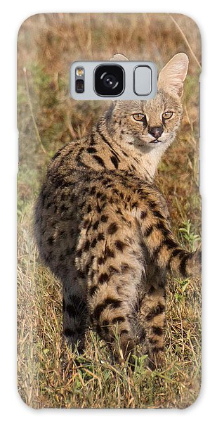 African Serval Cat 1 Galaxy Case