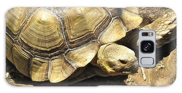 African Spurred Tortoise Galaxy Case by CML Brown