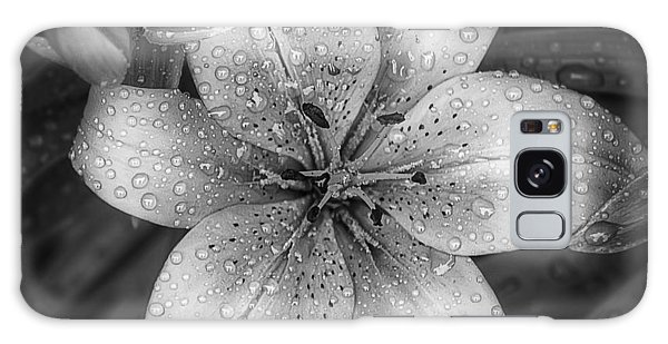 Lily Galaxy Case - After The Rain by Scott Norris