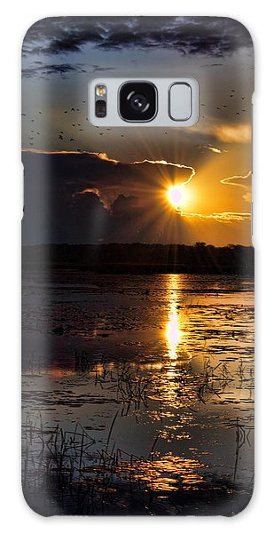 Late Afternoon Reflection Galaxy Case