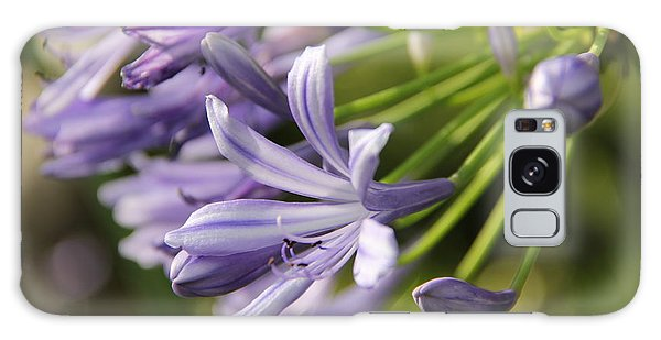 Agapanthus Flower Close-up Galaxy Case