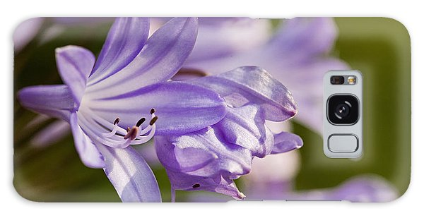 Agapanthus Galaxy Case by Liz  Alderdice