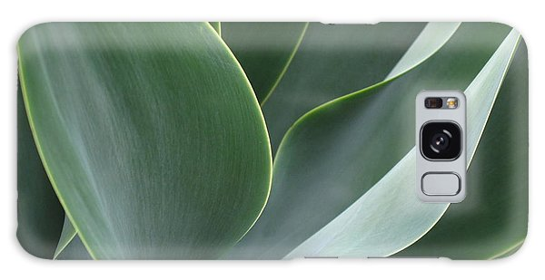 Agave 3 Galaxy Case by Ranjini Kandasamy