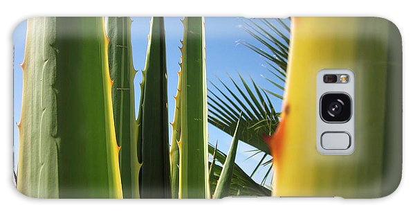 Agaves And Palm Trees Galaxy Case