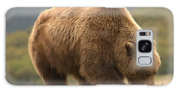 Alaska Kodiak Bear Galaxy Case